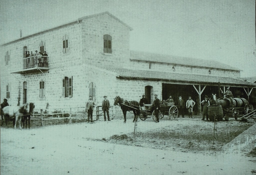 היקב הראשון בשרונה 1886